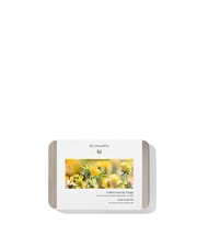 Dr Hauschka - Daily Face Care Kit